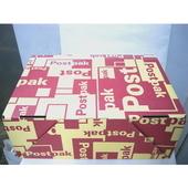 オランダ郵政ボックス 特大